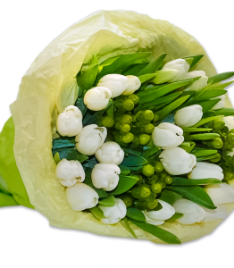White tulips and green hypericum