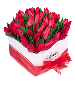 White Box of Red Tulips