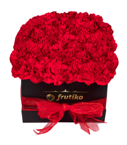 Black Box of Red Carnations