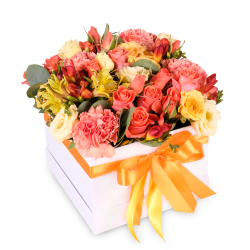 Flower box mix orange