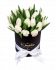 Black Box Oval of White Tulips
